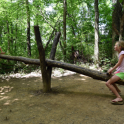 Blendon Woods Natural Playground: Creative play encouraged in forested nook of Metro Park