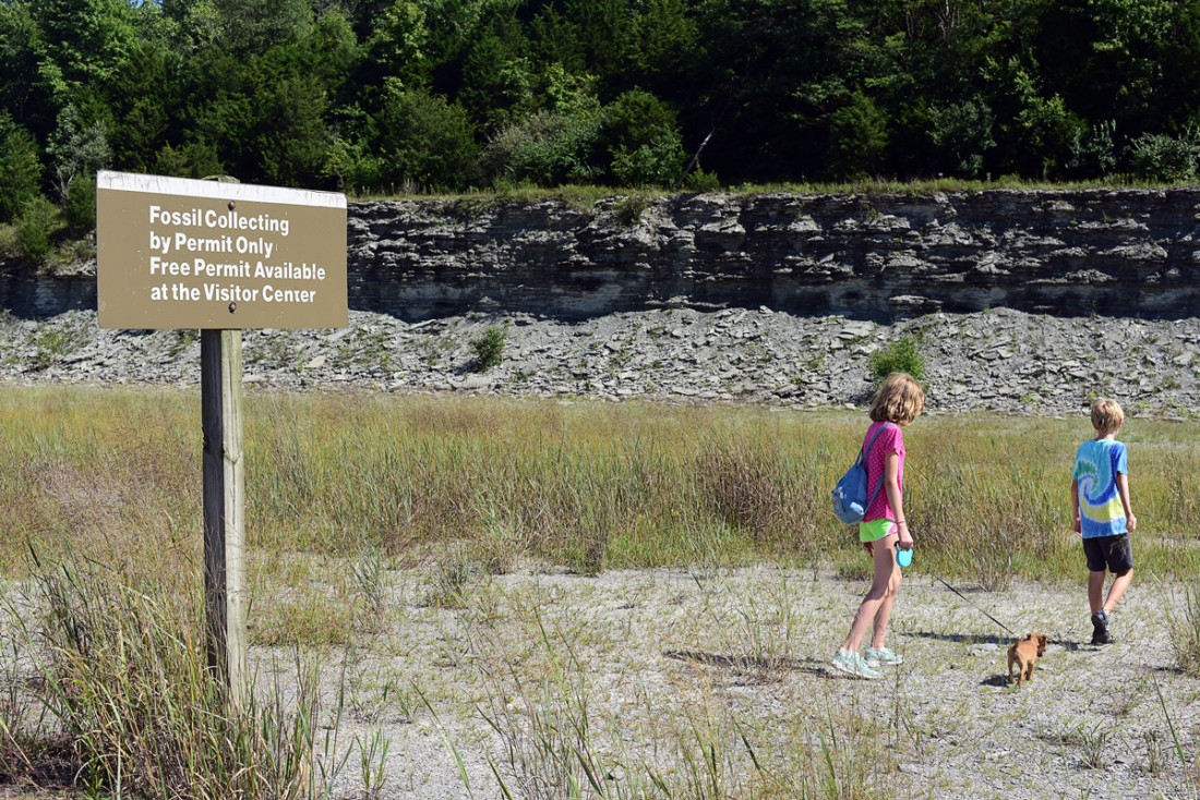 Caesar Creek State Park; Discover Ohio's most fertile fossil field