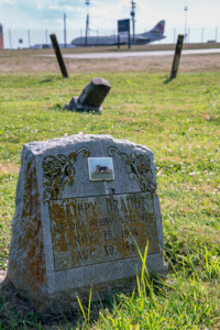 Brown Pet Cemetery: Final resting place for animal pals is a doggone gem